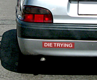 Die Trying Bumper Sticker